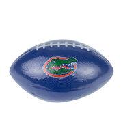 University of Florida NCAA Foam Football, , hi-res