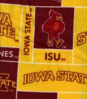 Iowa State University NCAA Block Fleece Fabric, , hi-res