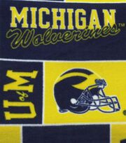 University of Michigan NCAA Block Fleece Fabric, , hi-res