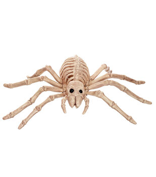 The Boneyard Mini Spider Skeleton