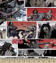 Walking Dead Michonne Ctn, , hi-res