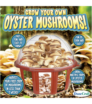 Grow Your Own Mushroom Dome Terrarium