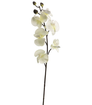 "Bloom Room 30"" Phalaenopsis Orchid Stem-White"