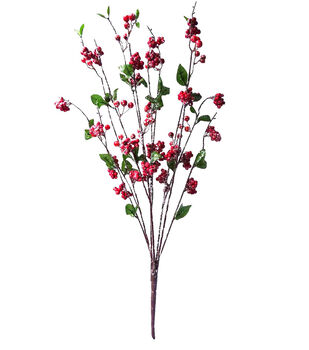 Blooming Holiday Berry Bush-Red