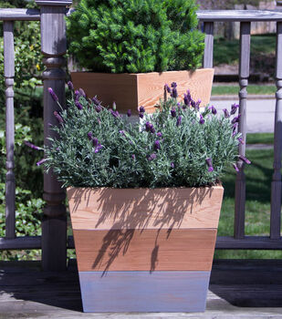 How To Make Understated Mod Stained Planters