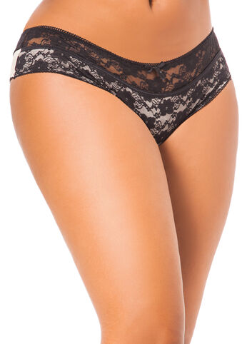Lace and Microfiber Panty