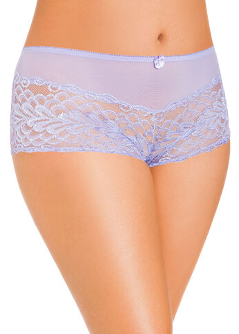 Lace and Mesh Boy Short Panties