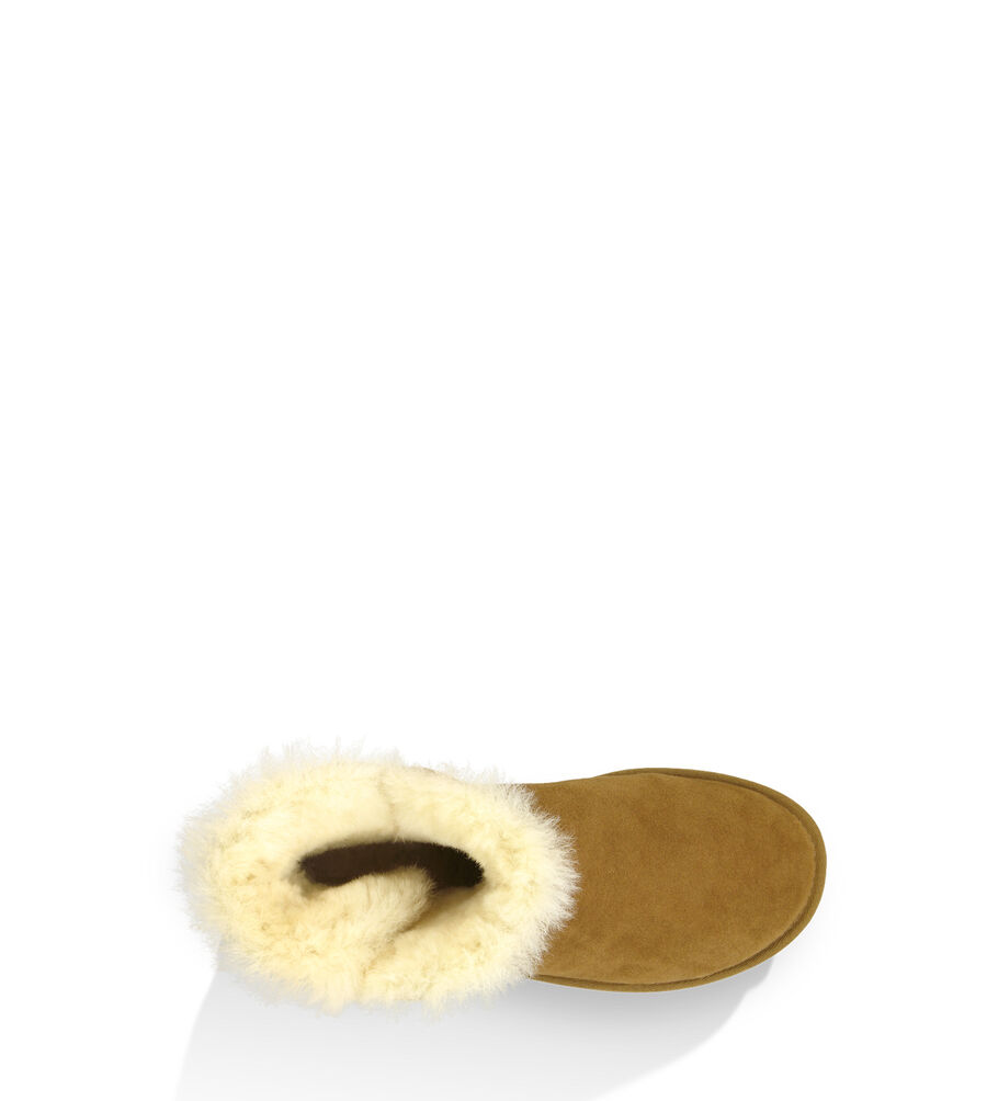 Mini Bailey Button - Image 5 of 6