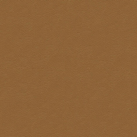 Sherwood Camel Leather Swatch ,  , large