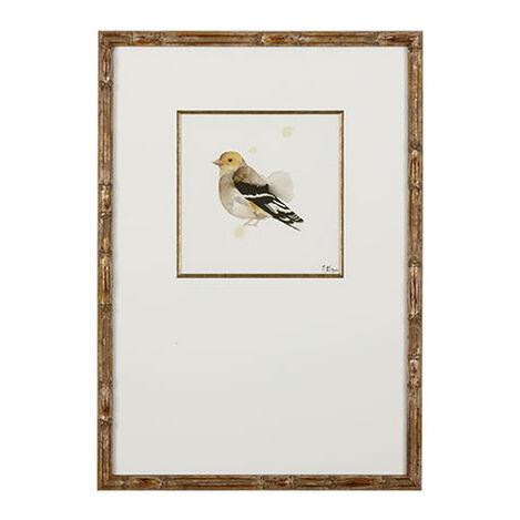 Watercolor Bird II ,  , large