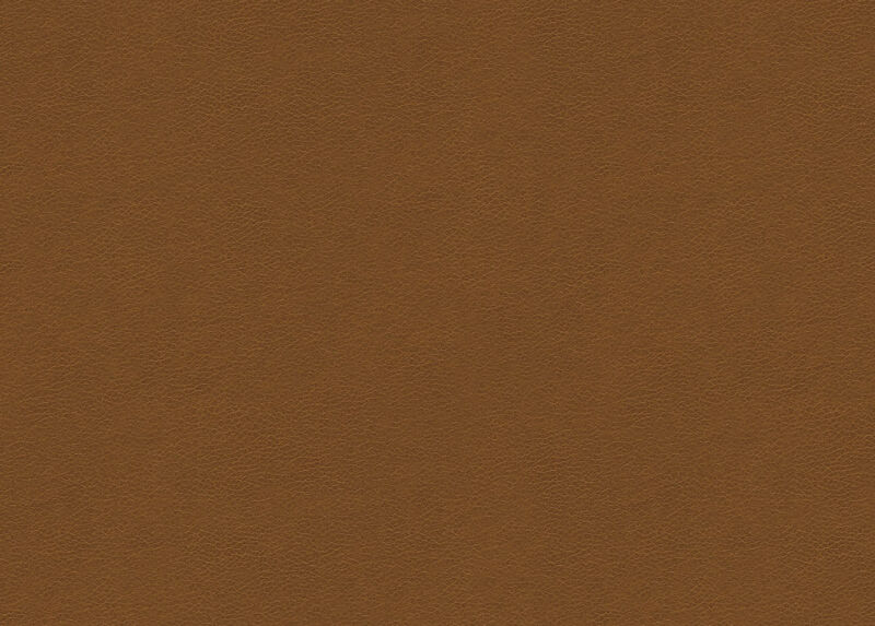 Omni Light Brown Leather Swatch Ethan Allen
