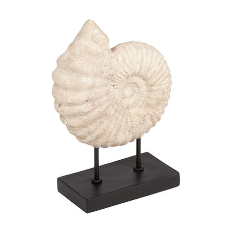 Small Shell on Stand ,  , large