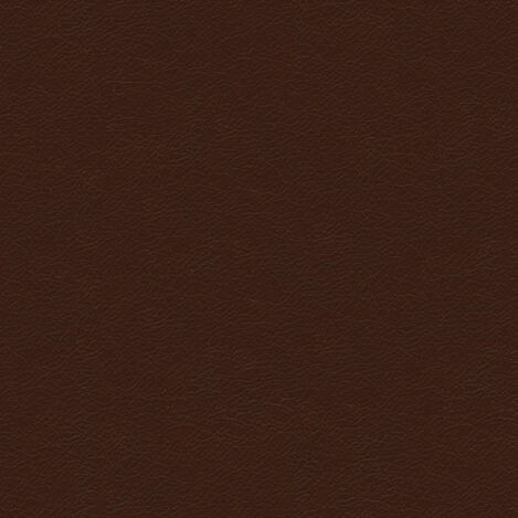 Trinity Chestnut Leather Swatch ,  , large
