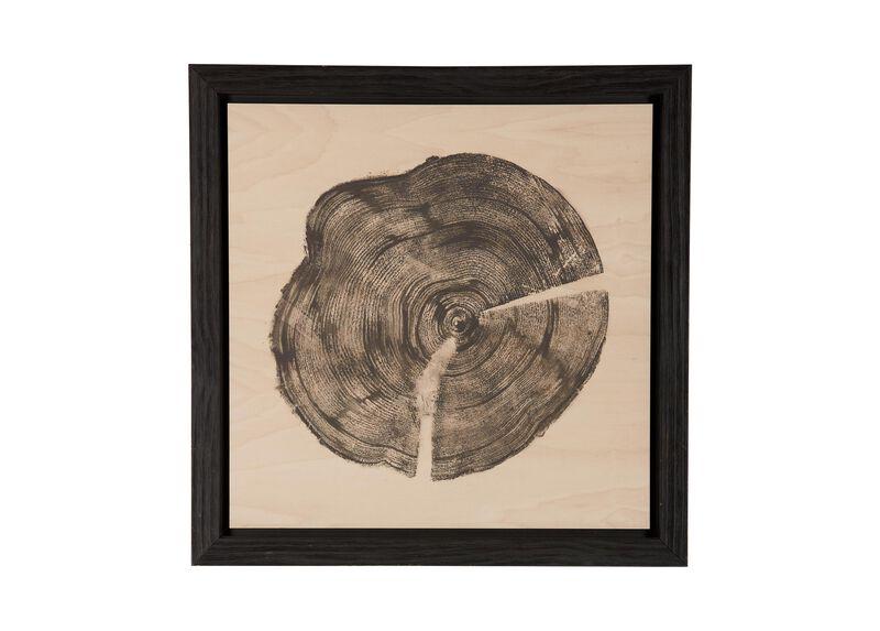Wood Slice I ,  , large_gray