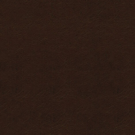 Trinity Dark Brown Leather Swatch ,  , large