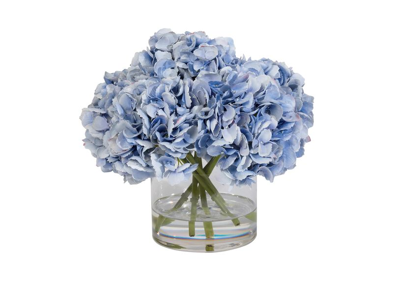 Blue Hydrangea Watergarden ,  , large_gray