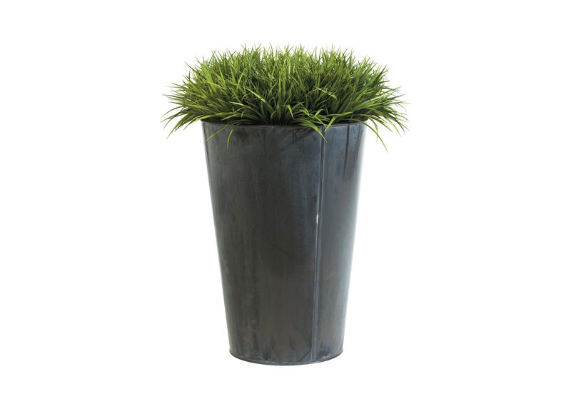 Grand Grass Tin ,  , large_gray