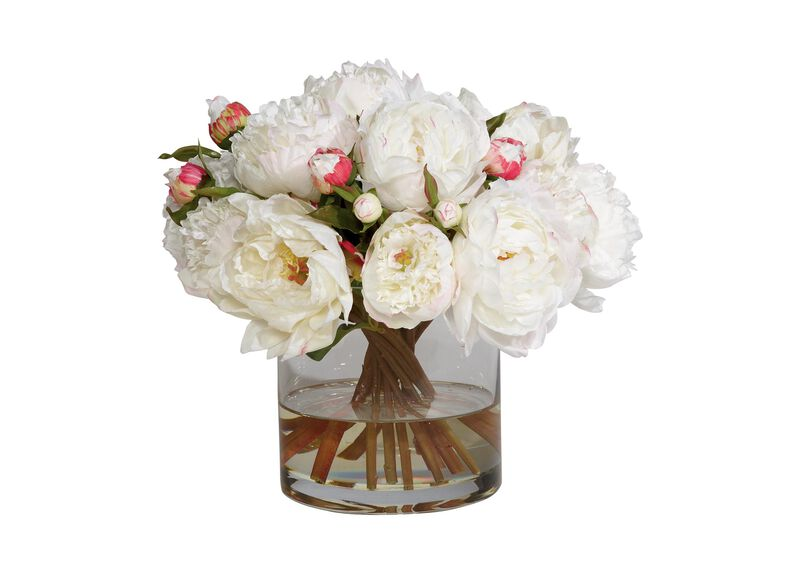 Small White Peony Watergarden ,  , large_gray
