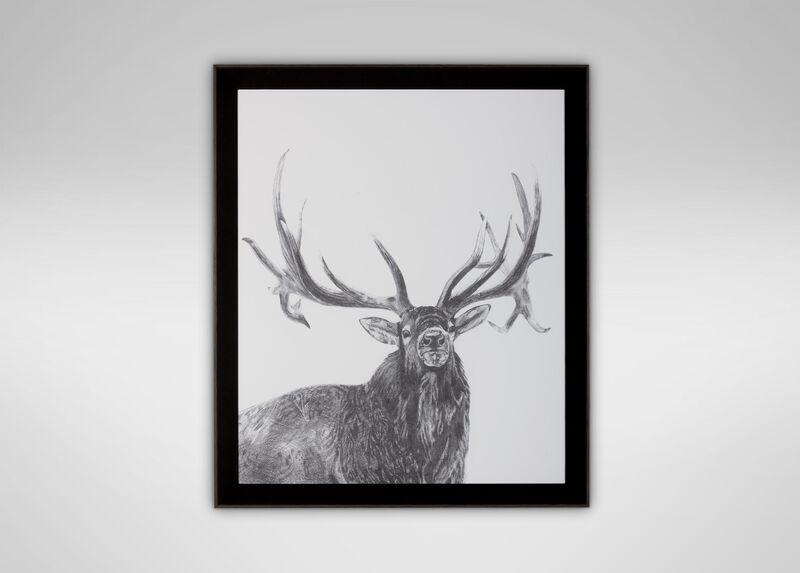 Elk ,  , large_gray