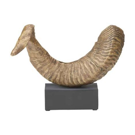 Faux Ram Horn on Stand ,  , large