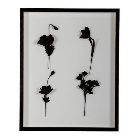 Ebony Flowers II ,  , large