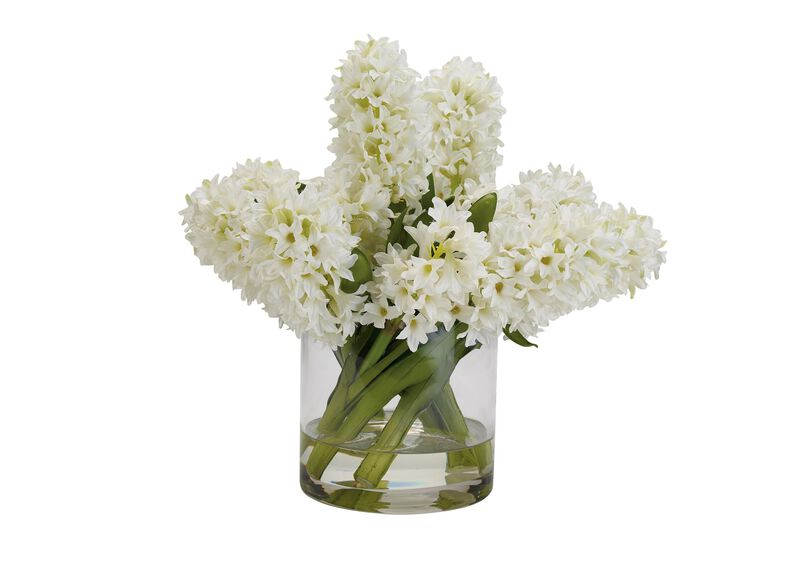 White Hyacinth Watergarden ,  , large_gray