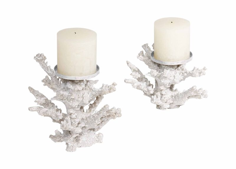 Staghorn Coral Candlestands ,  , large_gray