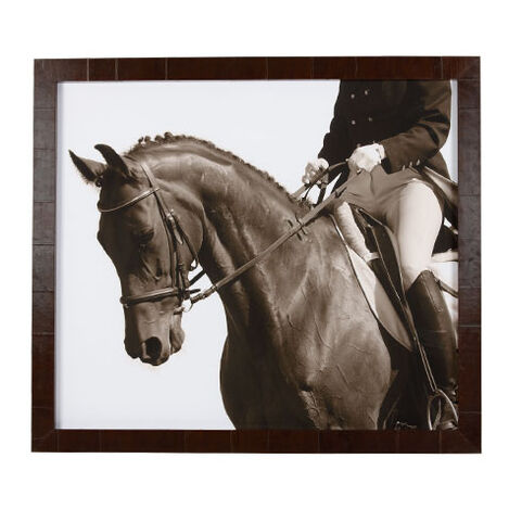 Show Horse ,  , large