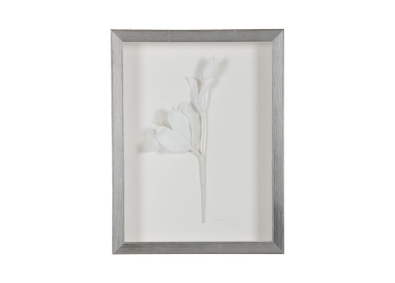 White Lily ,  , large_gray