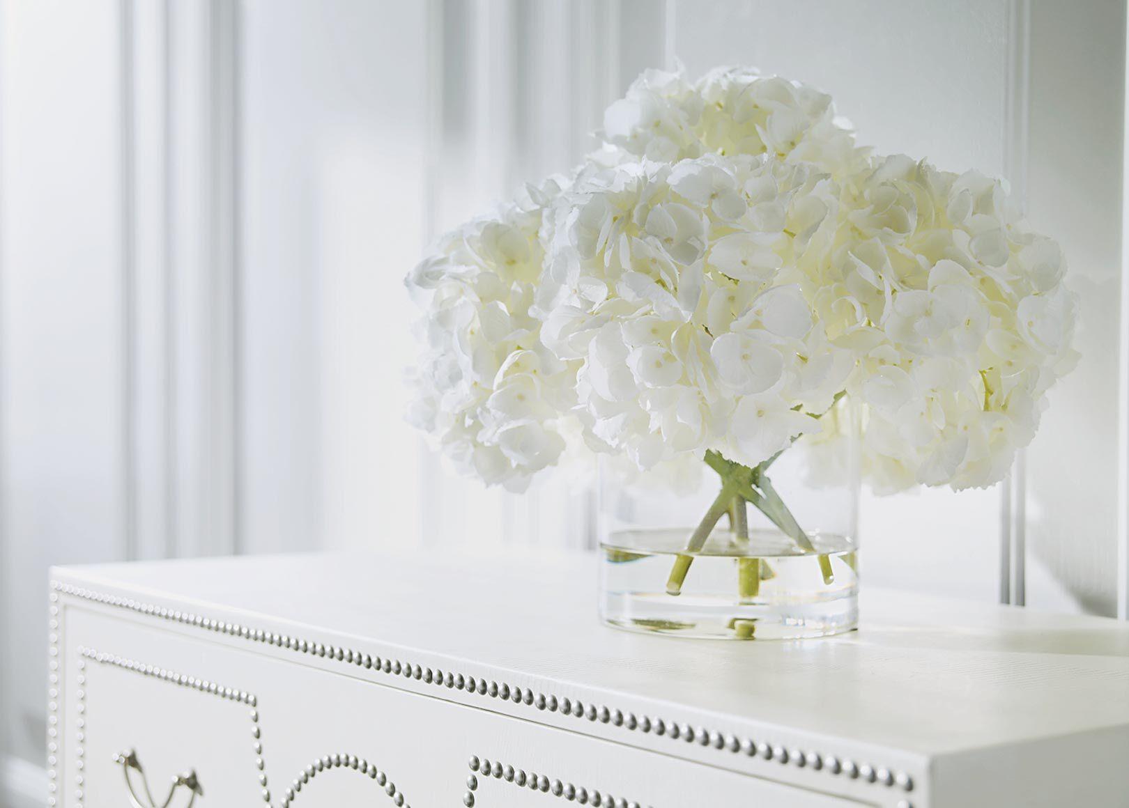 white hydrangea watergarden alt - White Hydrangea