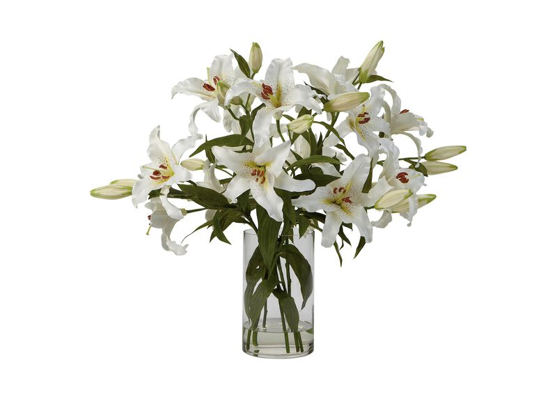 Casablanca Lily Watergarden ,  , large_gray