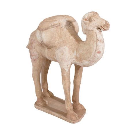 Tang Camel ,  , large