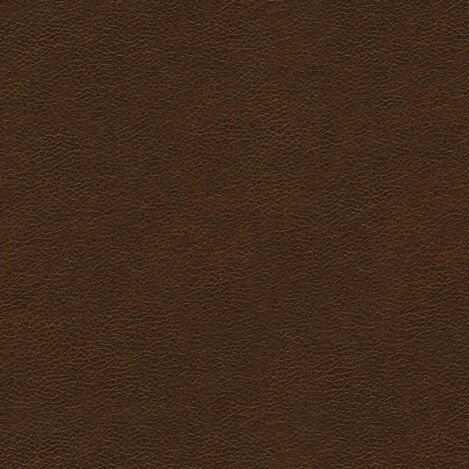 Omni Tobacco Leather Swatch ,  , large