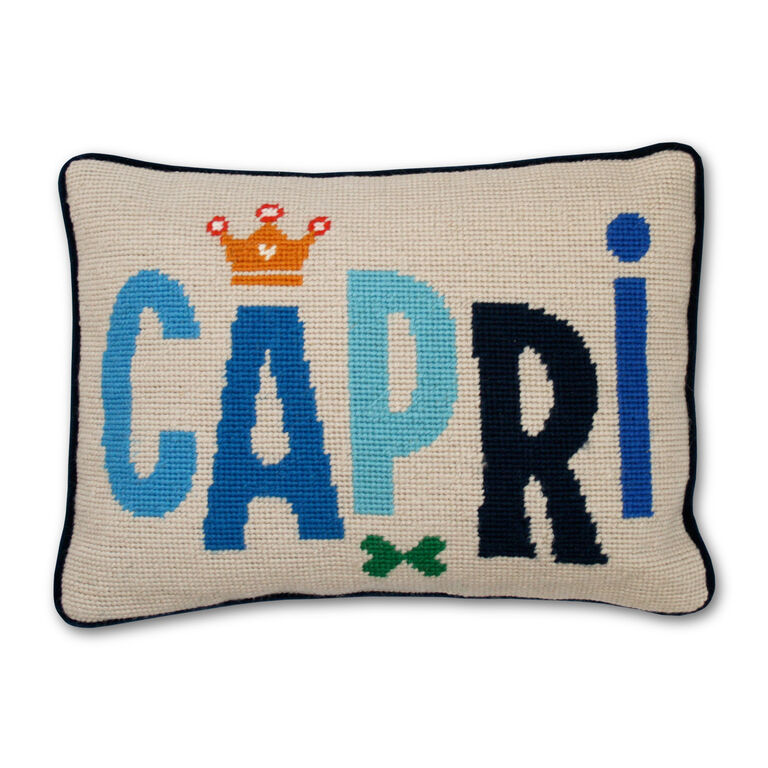 Holding Category - Capri Jet Set Needlepoint Cushion