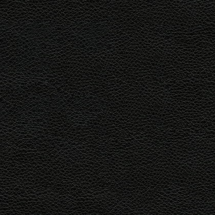 Fabric swatches - Livia Jet