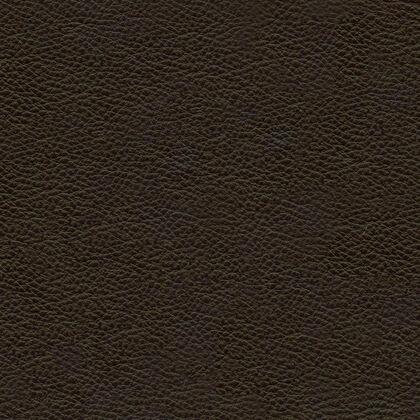Fabric swatches - Livia Chocolate