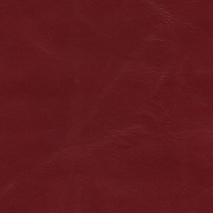 Fabric swatches - Lyon Red