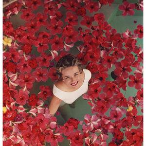 "Slim Aarons - Slim Aarons ""Hibiscus Flowers"" Photograph"