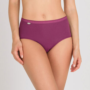 3 Midi Briefs in White, Plum and Blue - Cotton Stretch-PLAYTEX