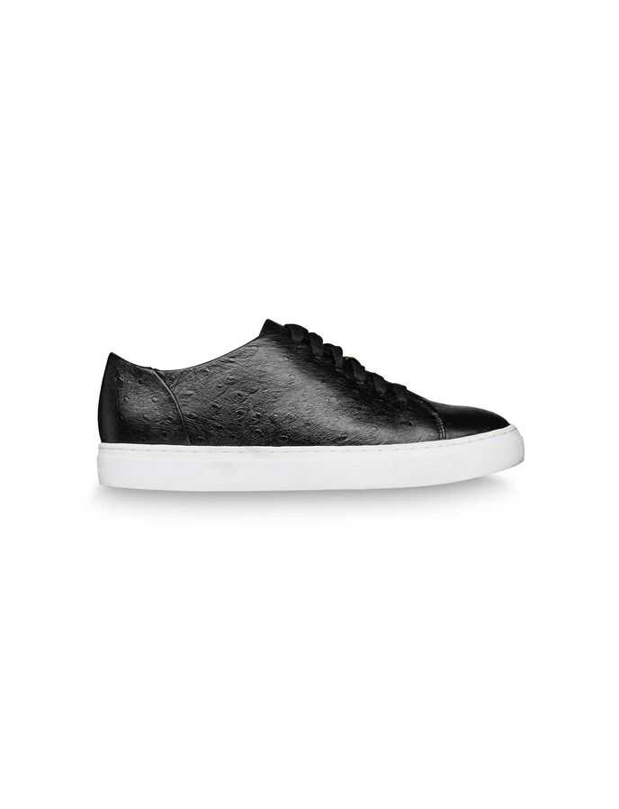 CREWE SNEAKER in Black from Tiger of Sweden