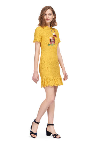 Lace Frill Hem Shift Dress, in Yellow on Whistles