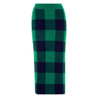 Clark Knit Skirt, in Green on Whistles